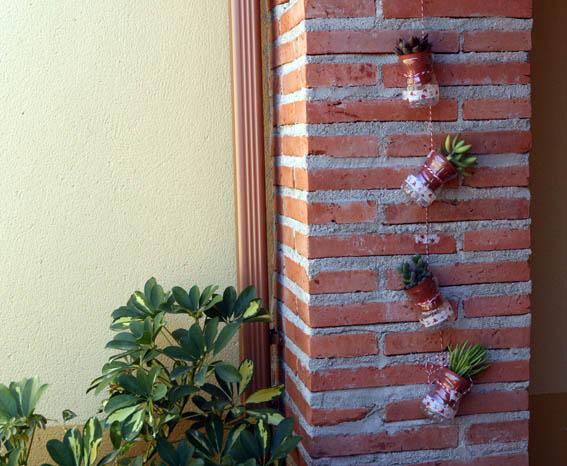 Cactus colgantes 1