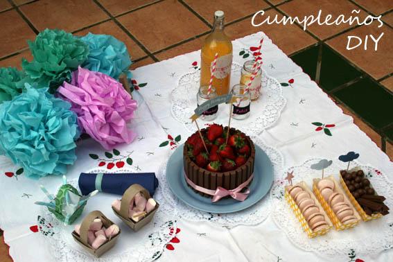 cumpleaños diy 9