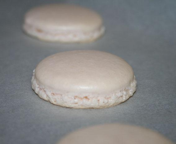 macarons 36