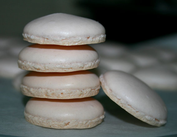 macarons 44