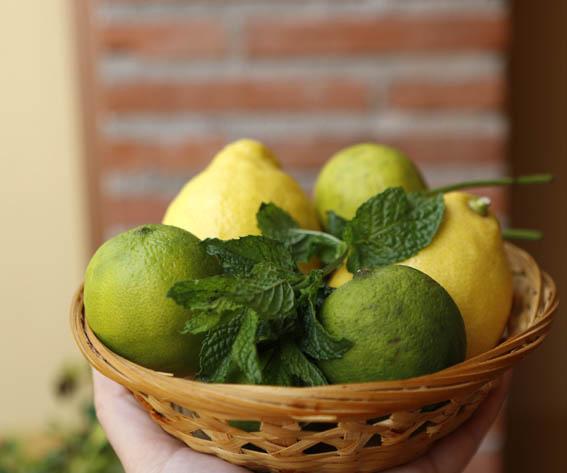 Sorbete de limón 2