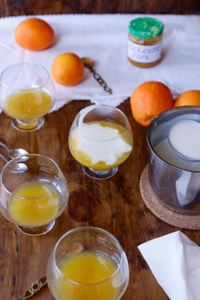 Panna cotta de naranja 14